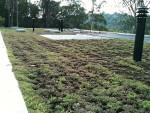 elevador-cultivo-poliondas-telhado-verde-cobertura-poliondas