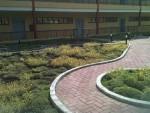 revestimento-vivo-flat-17l-telhado-verde-cobertura