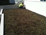 revestimento-vivo-flat-4l-telhado-verde-cobertura