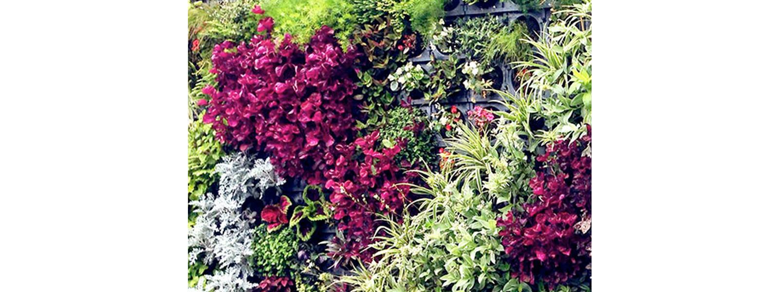 capa-jardim-vertical