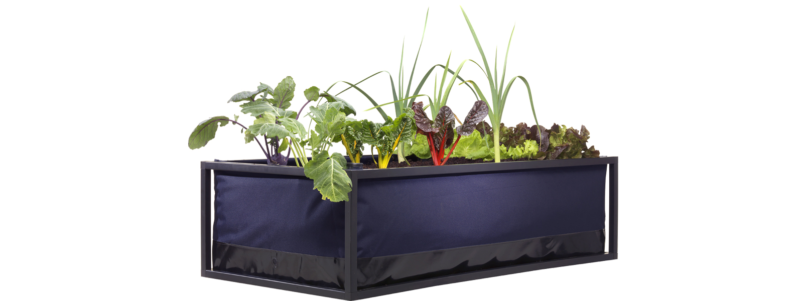 Uma horta para qualquer espaço