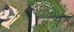 horta-urbana-em-casa