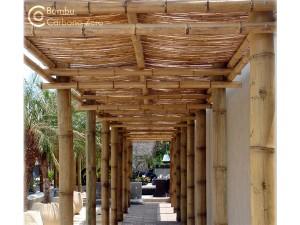 Bambu guia de empresas ecoeficientes - Pergolas de bambu ...