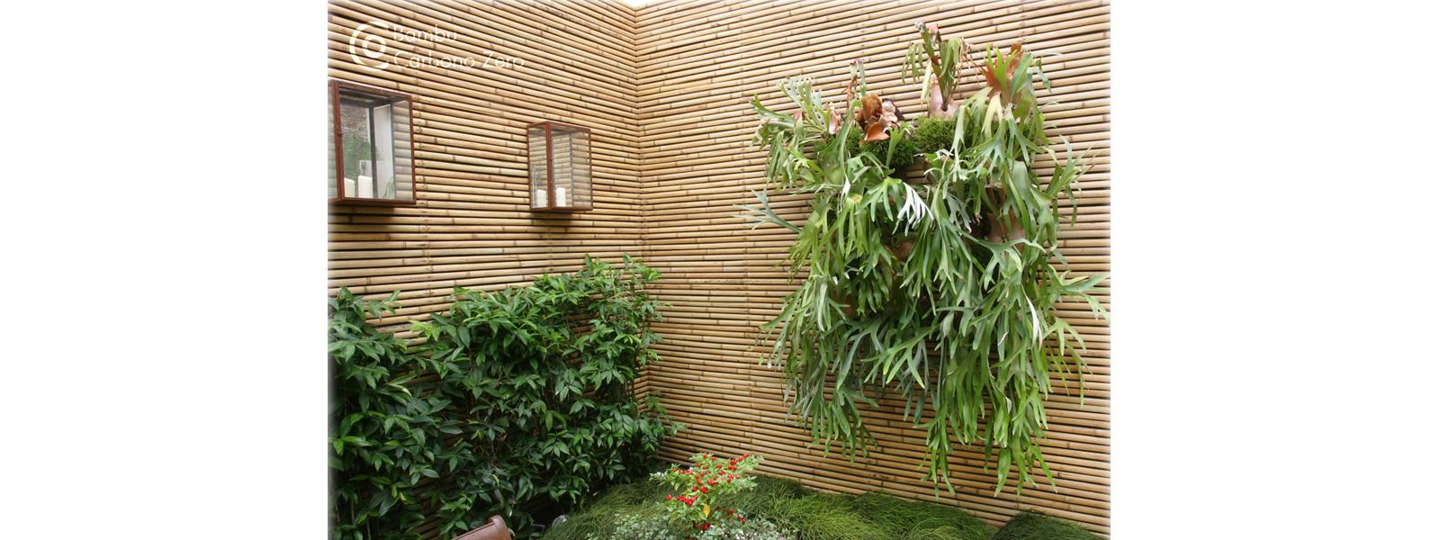 reguas-de-bambu