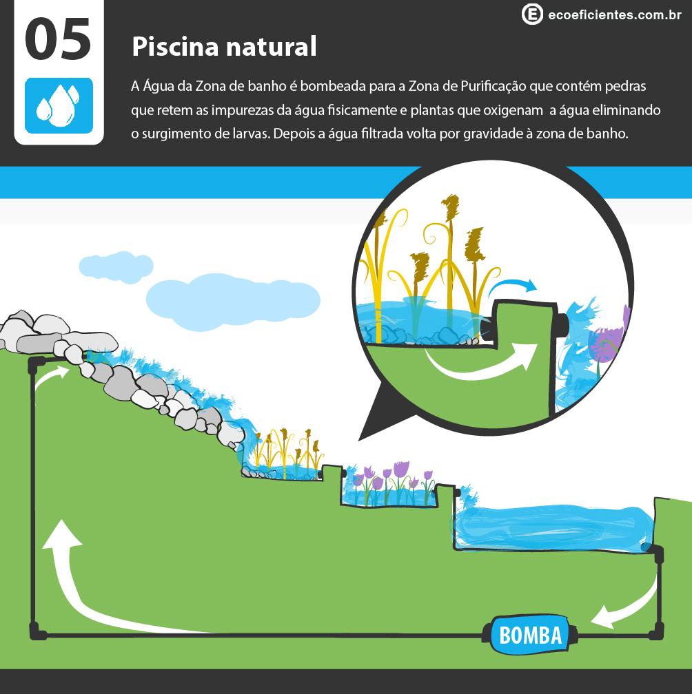O que e como fazer uma piscina natural ecoeficientes for Piscina filtro natural